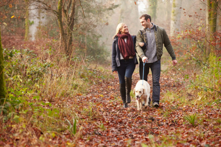Couple walking dog in autumn